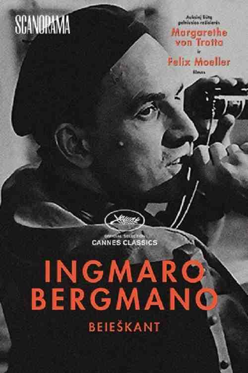 Ingmaro Bergmano beieškant