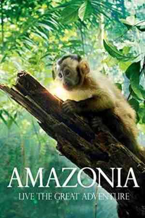 Amazonės džiunglės